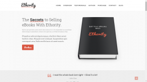 The Book - Websites For Self-Published Authors
