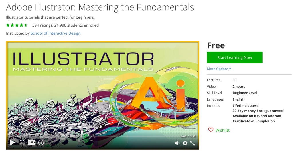 Adobe Illustrator- Mastering the Fundamentals